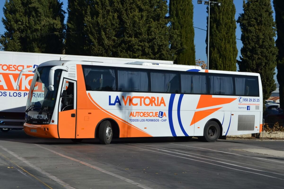 Permiso autobús D